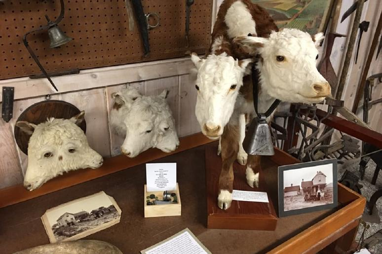Grant County Historical Museum (Canyon City, Oregon)