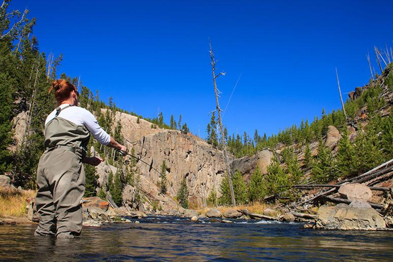 Go fly fishing in Yellowstone National Park, Wyoming