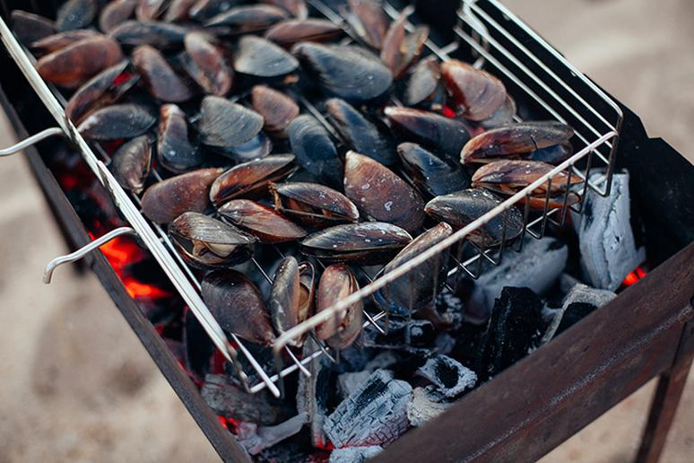 Clams, oysters and mussels