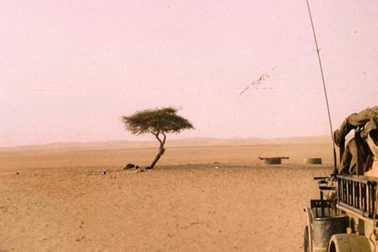 The Tree of Ténéré, Sahara
