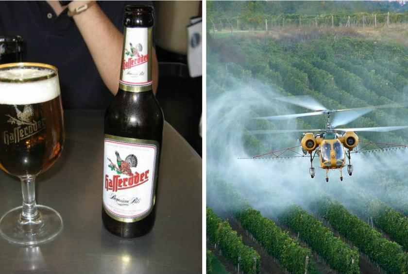 "Germans are saying ""nein"" to weed killer in their brews."