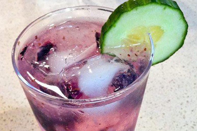 Cucumber Gin and Tonic with Blueberries
