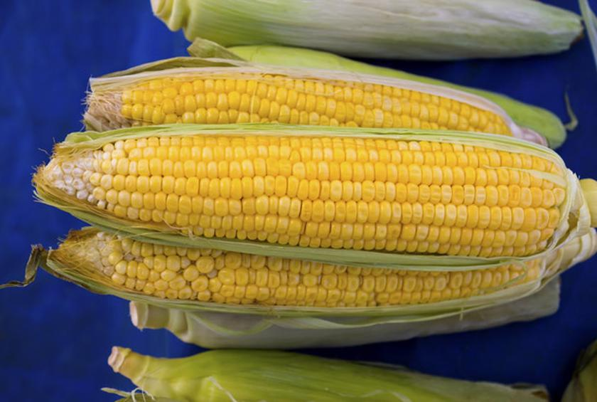 how to cook corn off the cob on the stove