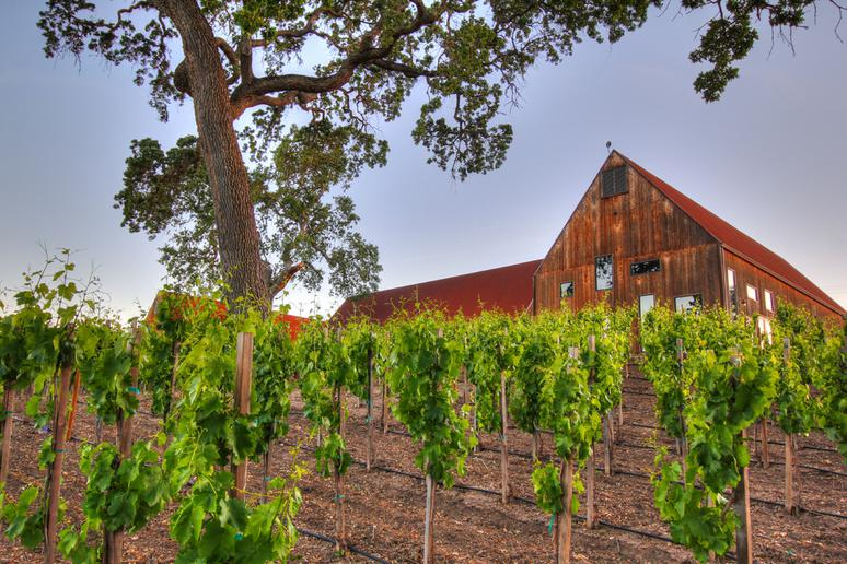 100. Hope Family Wines, Paso Robles, Calif.