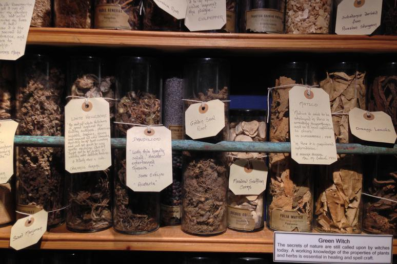 27. The Museum of Witchcraft and Magic