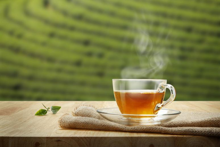 Have some green tea every day