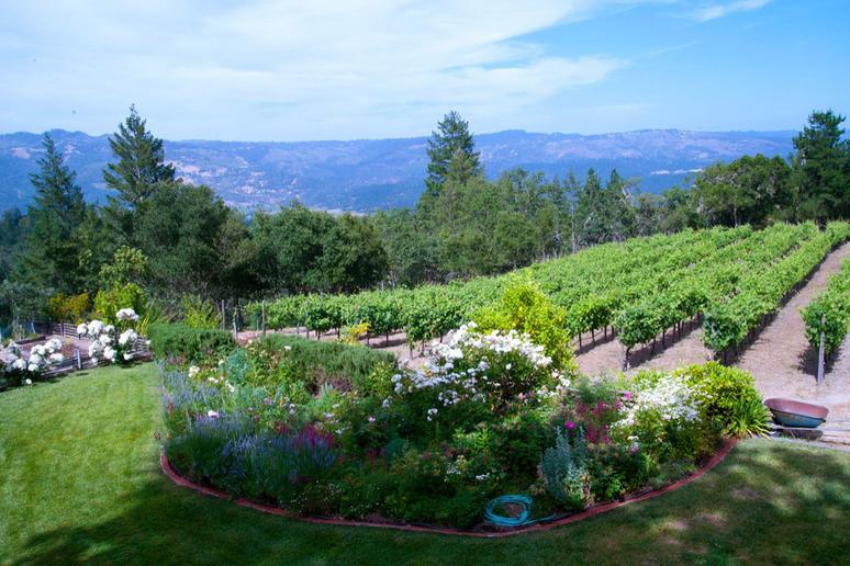 32. Stony Hill Vineyard, St. Helena, Calif.