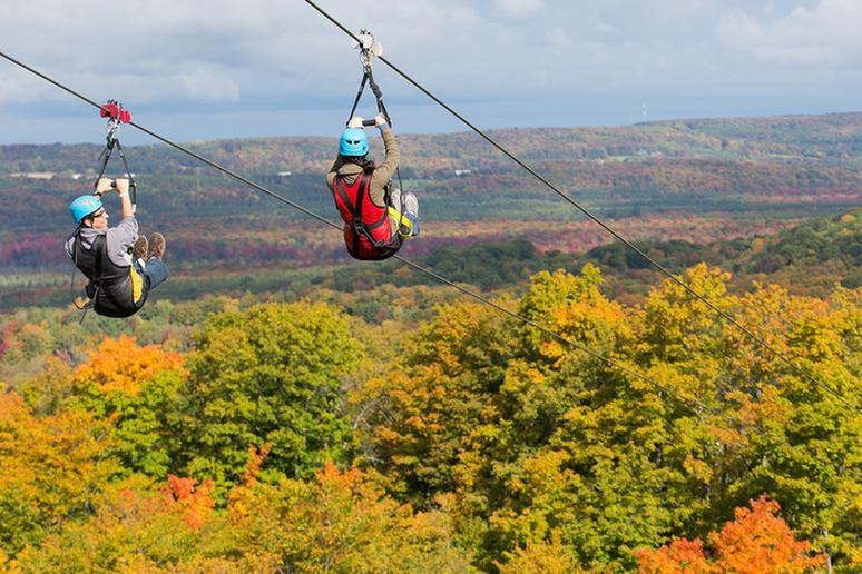 Go Zip Lining Above Fall Leaves