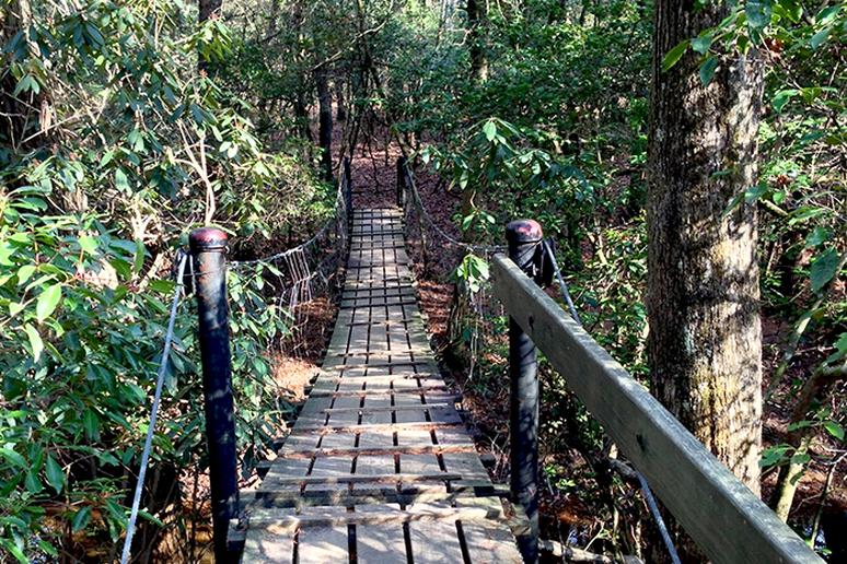 Tennessee – Savage Gulf Loop
