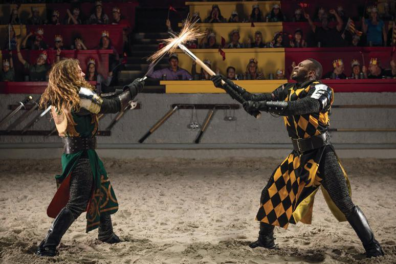 Medieval Times (Multiple Locations)