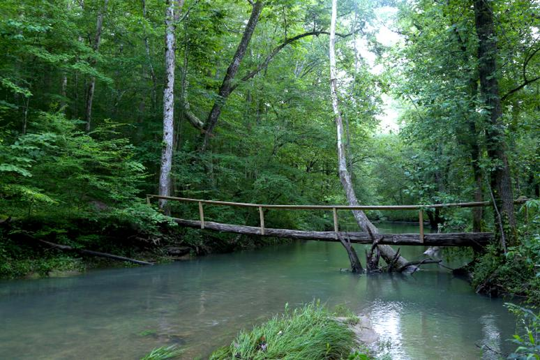 Alabama - The Walls of Jericho Trail