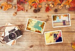 The Most Perfect Fall Day Trip in Every State