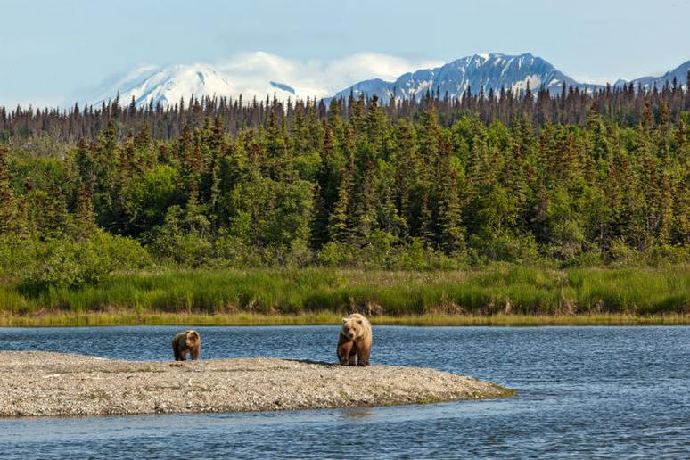 Alaska: Katmai National Park