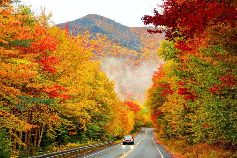 The Best American Parks For Incredible Fall Colors