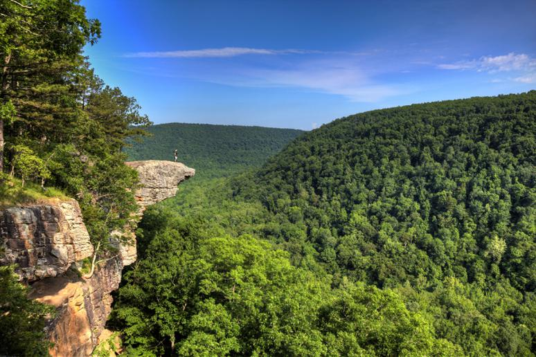 Arkansas - Whitaker Point