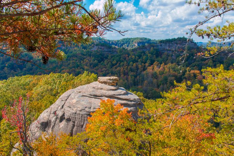 Kentucky - Daniel Boone National Forest