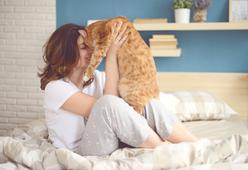 25 Purrfect Reasons to Adopt A Cat