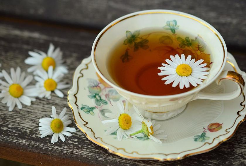 camomile tea immune system benefits