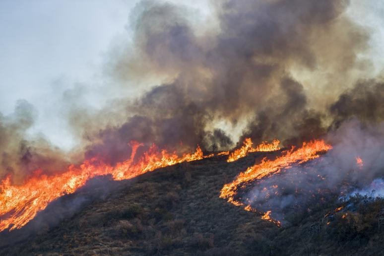 Climate change: Wildfires