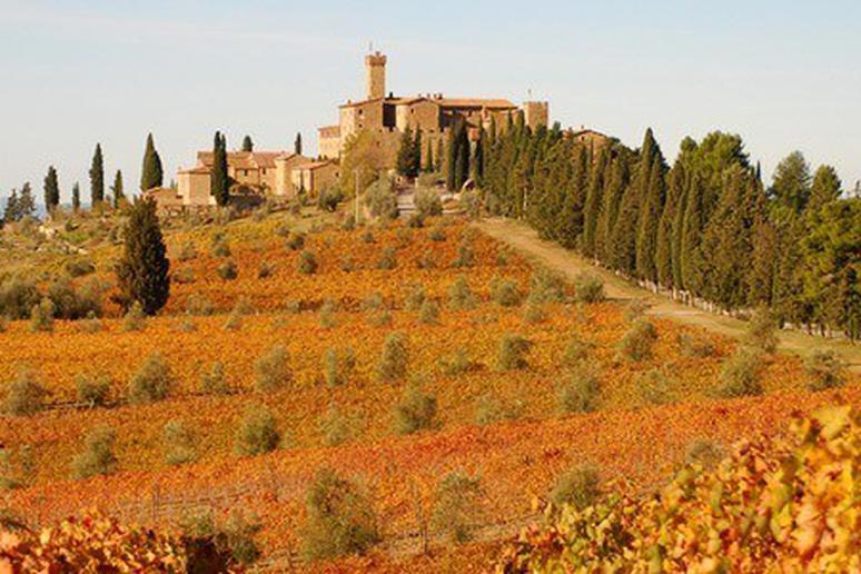 10 Best Hotels for Wine Lovers