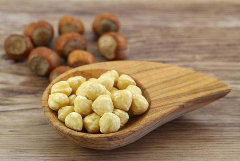 Are Hazelnuts Good For Dogs