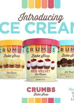 Crumbs Bake Shop Introducing Cupcake Ice Cream