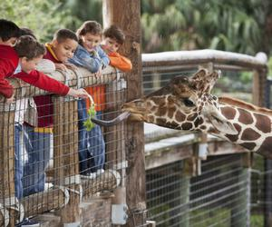 The Best Small Zoos in America