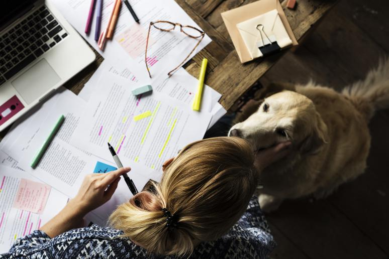 Do: Feed your dog around your work schedule
