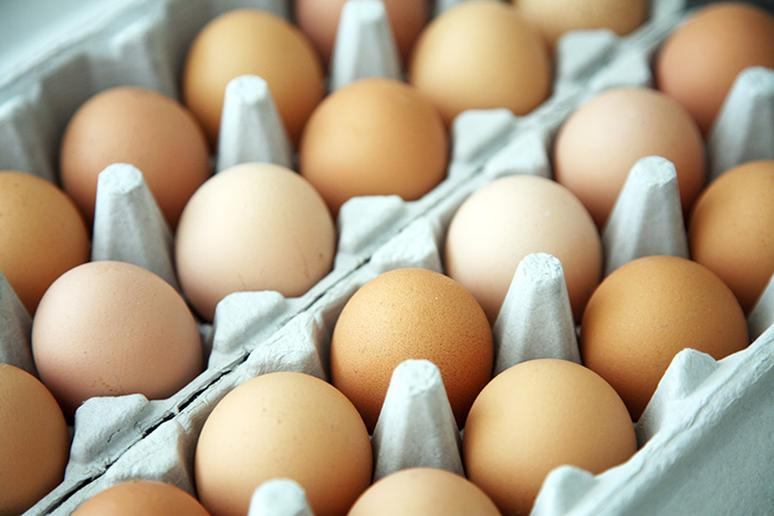 Not knowing what egg terms mean