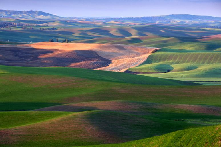 Idaho – The Palouse