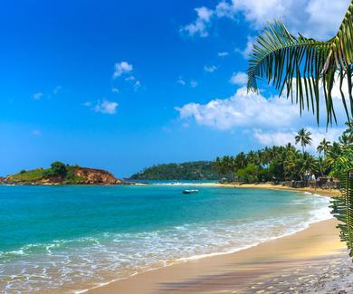 65 Photos of Tropical Destinations to Make You Forget How Cold You Are