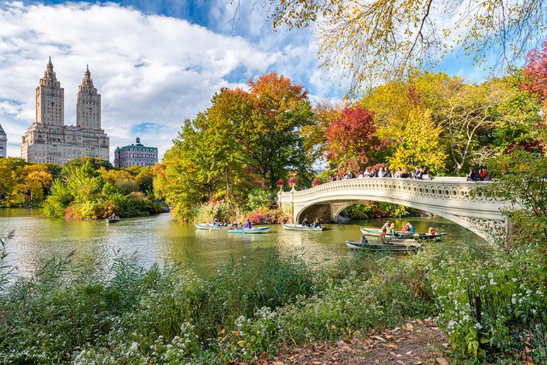 Central Park in New York City, New York