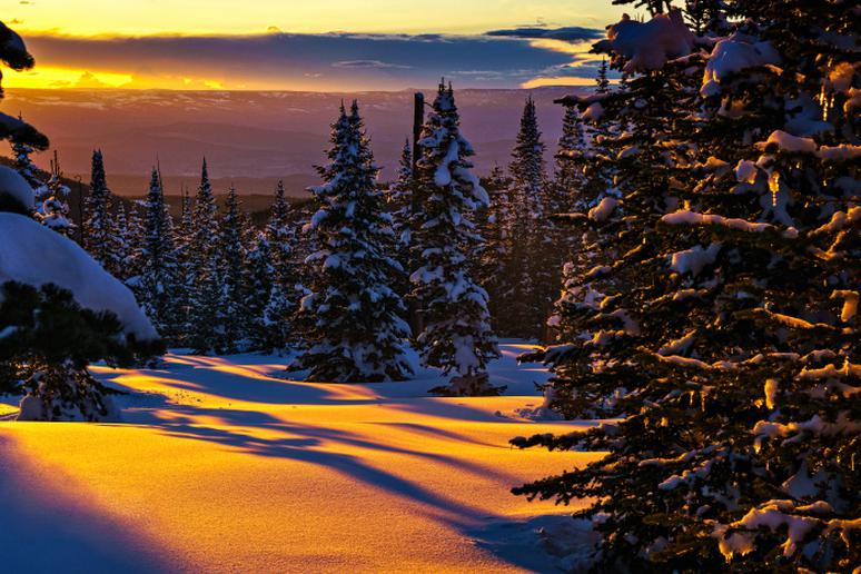 """Lack of sunlight is the reason for the """"winter blues"""""""
