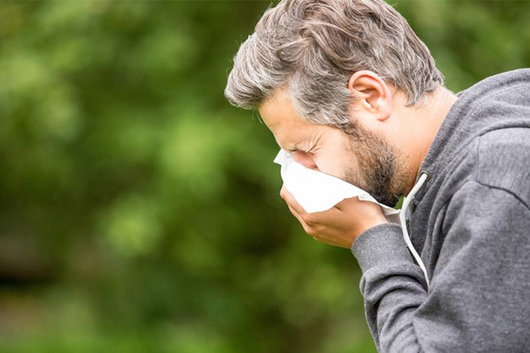 It may also improve allergy symptoms
