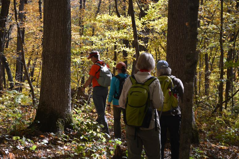 Iowa - Backpack Trail in Yellow River State Forest