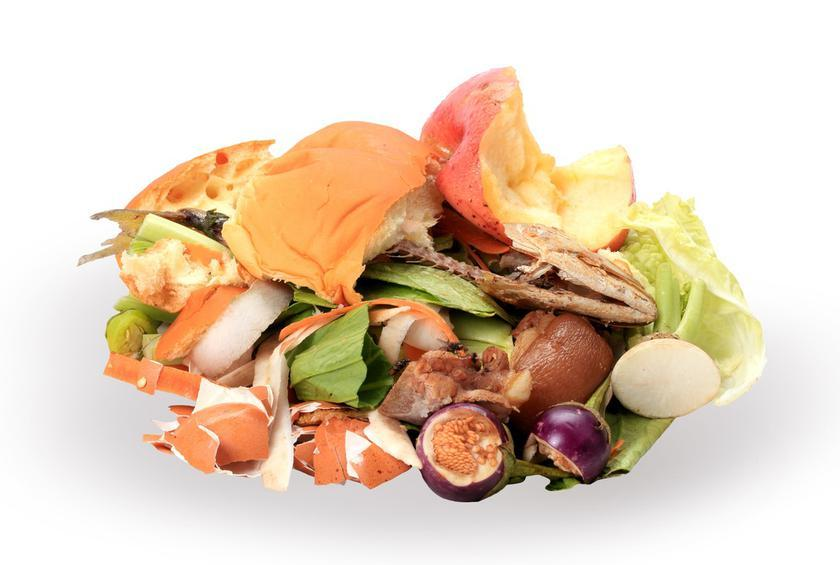 Obama Administration Teams with Private Sector to Cut US Food Waste in Half