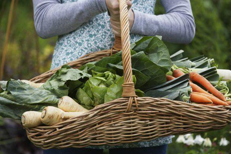 7 Reasons Organic Food is So Expensive