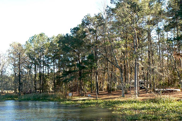 Florida – Three Rivers State Park