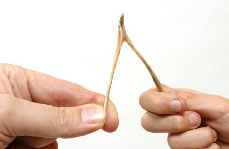 The Wishbone Has a Real Name, and a Purpose