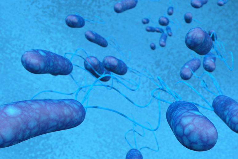 Enterotoxigenic E. Coli (ETEC)