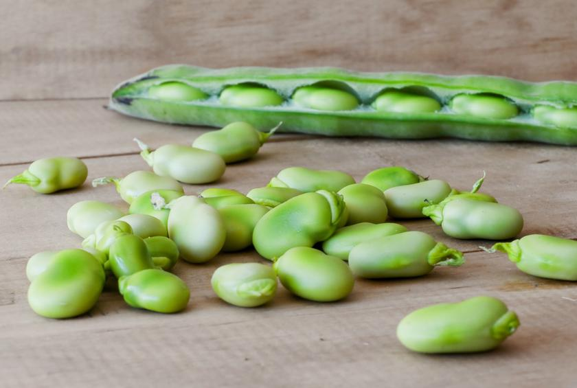 how to cook fresh christmas lima beans