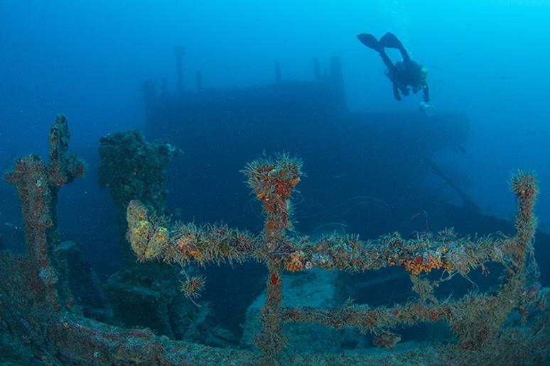 Dive to find shipwrecks at Pompano Beach, Florida