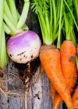 6 Vegetables You're Probably Washing Wrong